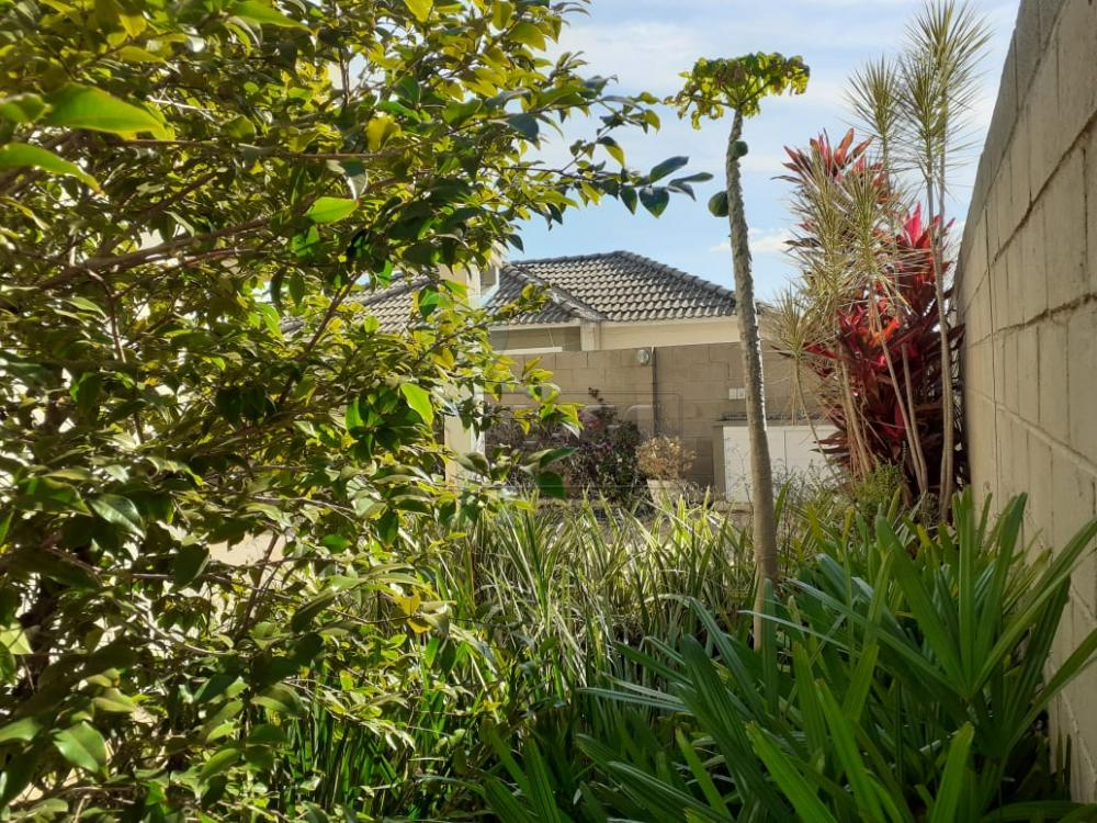 Comprar Casas / Condomínio em Ribeirão Preto apenas R$ 480.000,00 - Foto 44