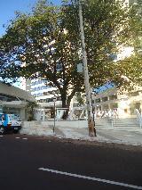Alugar Comercial / Sala Comercial em Ribeirão Preto apenas R$ 1.000,00 - Foto 8