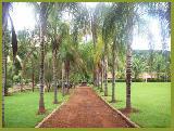 Jardinopolis Jardinopolis Rural Venda R$3.500.000,00 15 Dormitorios 30 Vagas Area do terreno 72600.00m2 Area construida 1500.00m2