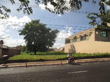 Alugar Comercial / TERRENO em Ribeirão Preto. apenas R$ 1.100,00