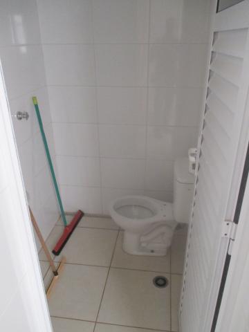 Alugar Apartamento / Cobertura em Ribeirão Preto apenas R$ 5.000,00 - Foto 22