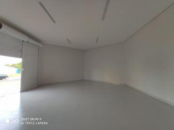 Alugar Comercial / Salão/Galpão em Ribeirão Preto apenas R$ 1.590,00 - Foto 3