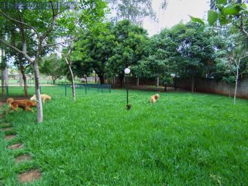 Alugar Casas / Condomínio em Ribeirão Preto apenas R$ 5.500,00 - Foto 1