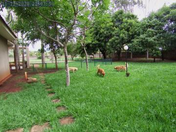 Alugar Casas / Condomínio em Ribeirão Preto apenas R$ 5.500,00 - Foto 2
